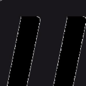 Salming-Logo-webb